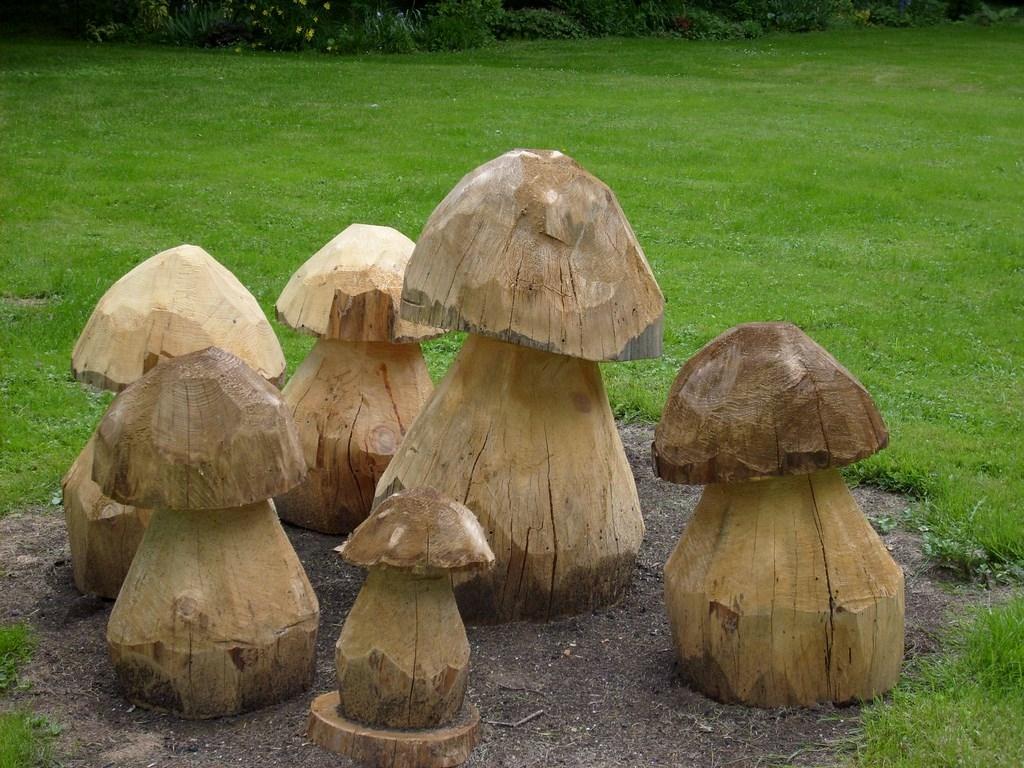 champignons_en_sapin